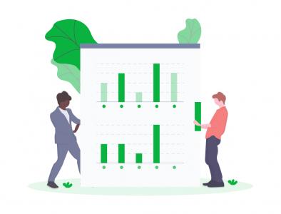 data_report